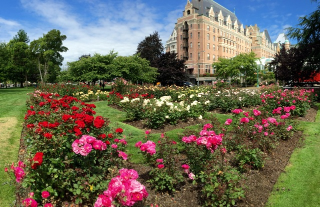 Rose garden at The Empress